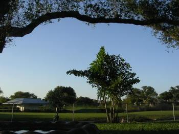 Florida_082